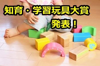 2017年知育玩具大賞