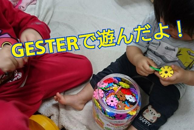 GESTER(ジスター)